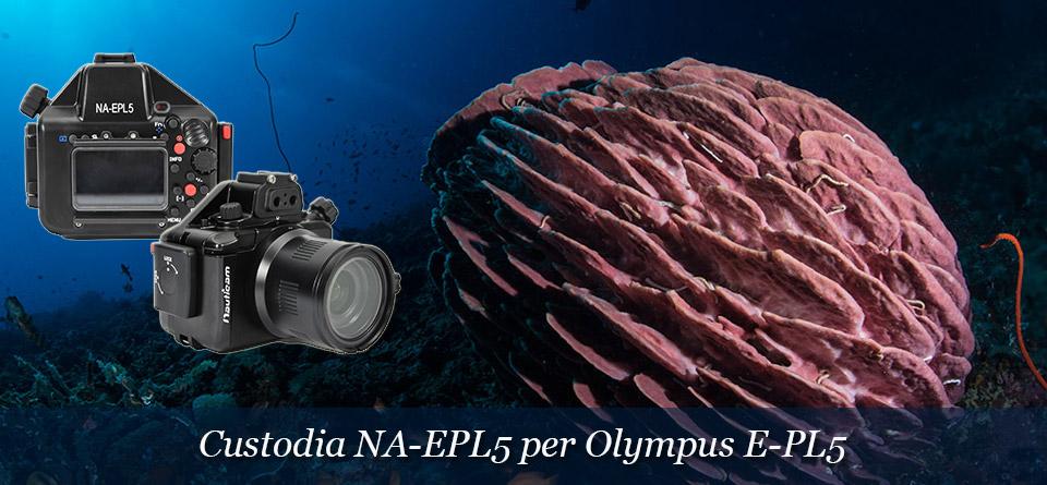 Custodia per Olympus E-PL5