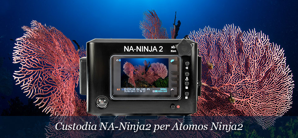 Custodia NA-NINJA2 per Atomos Ninja-2 HDMI Video Monitor
