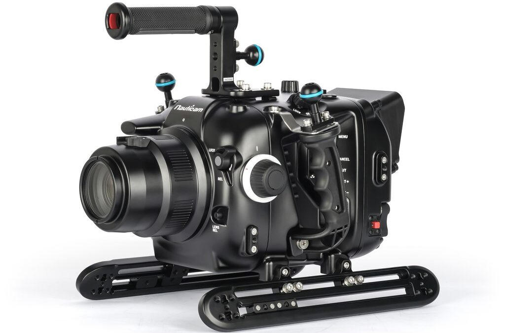 Custodia Video per CANON EOS C300III / C500II